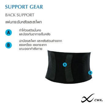 Back Support  รุ่น IC3511